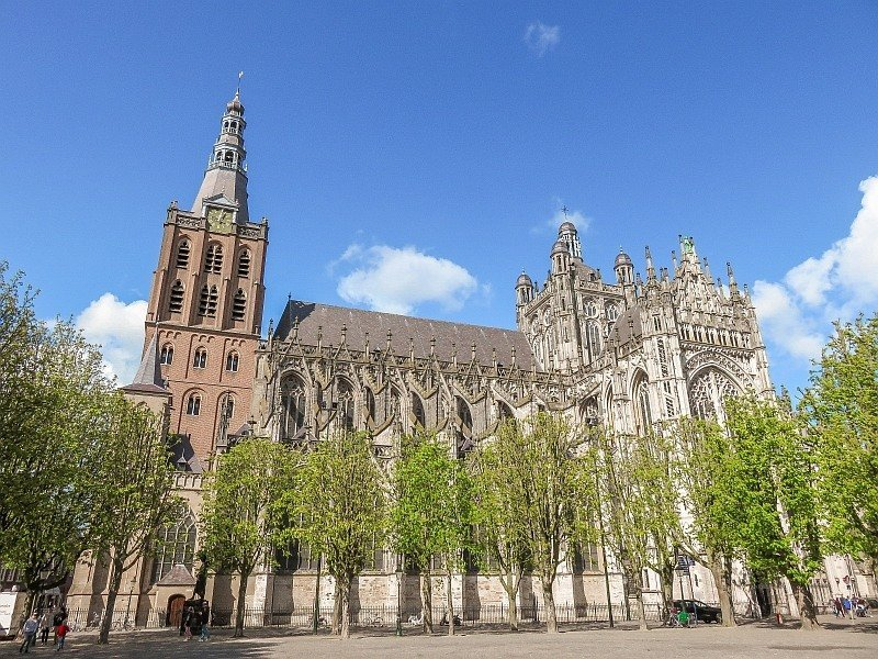 a beautiful cathedral with a trees in fresh green on front, Sint-Jan in Den Bosch