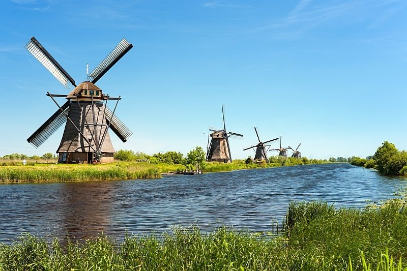 five wind mills alongside a canal with green grass and blue sky, Kinderdijk in the Netherlands