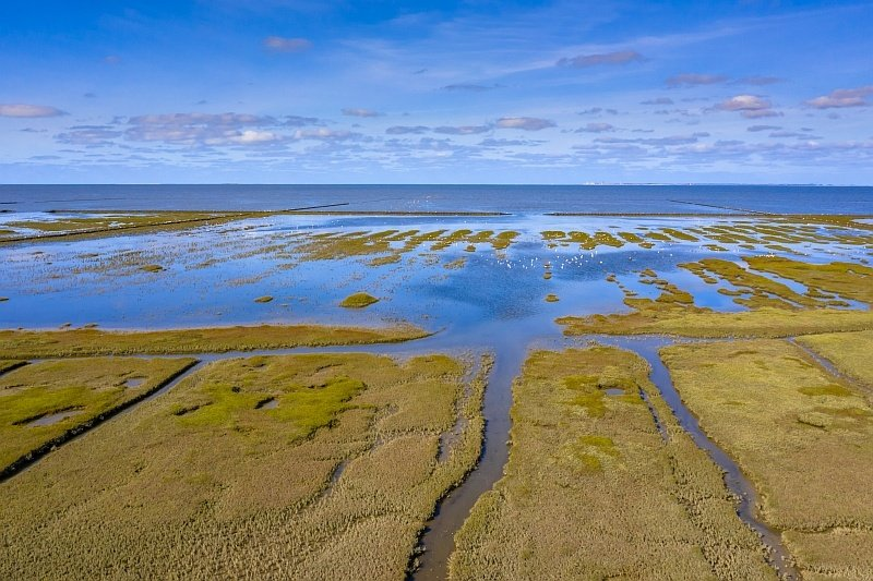 a tidal area of coastline with high tide, Wadden Sea